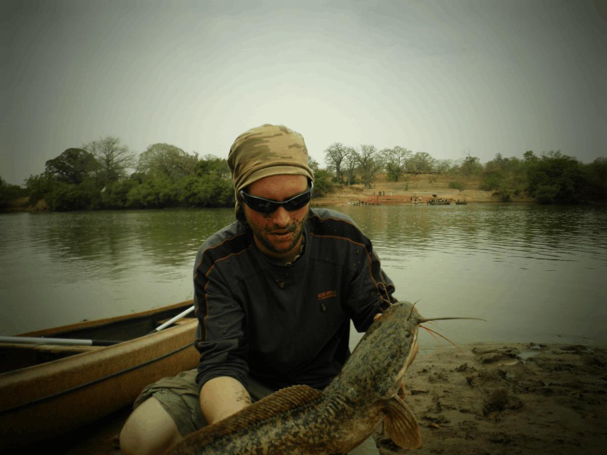 expeditie gambia vundu catfish
